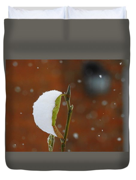 Snowing Duvet Cover by Betty-Anne McDonald