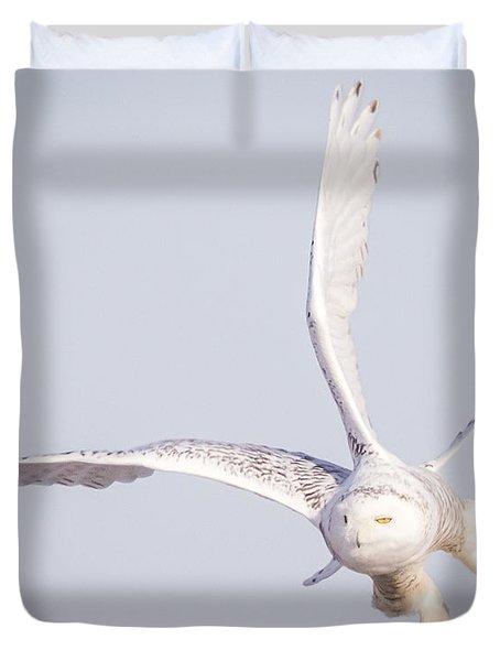 Snowy Owl Flying Dirty Duvet Cover