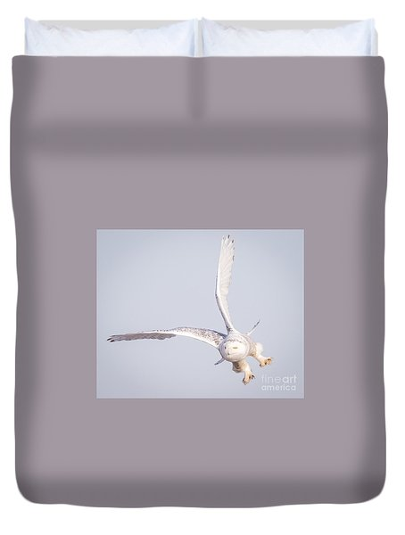 Snowy Owl Flying Dirty Duvet Cover