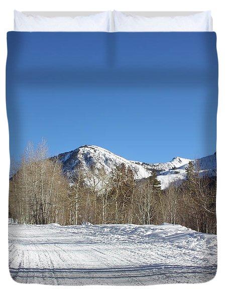 Snowy Aspen Duvet Cover by Kim Hojnacki