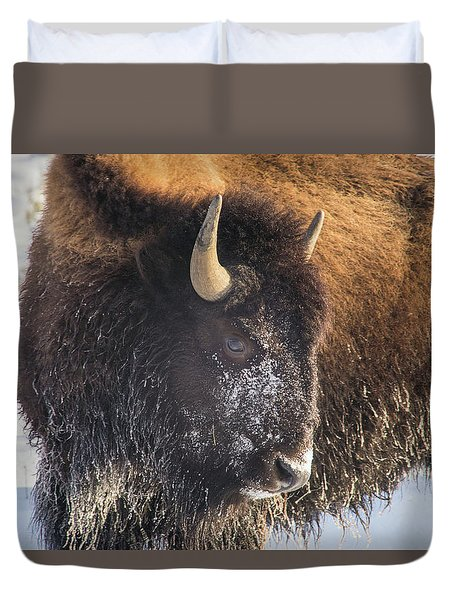 Snowy Bison Duvet Cover