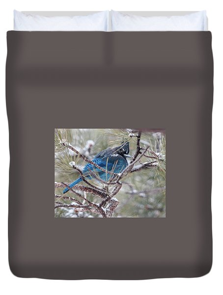 Snowy Bluejay  Duvet Cover
