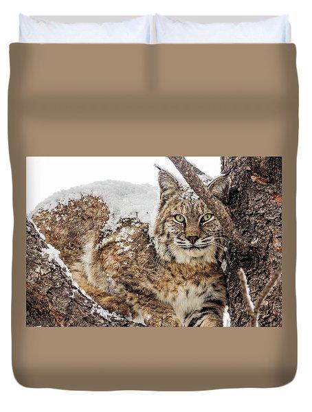 Snowy Bobcat Duvet Cover