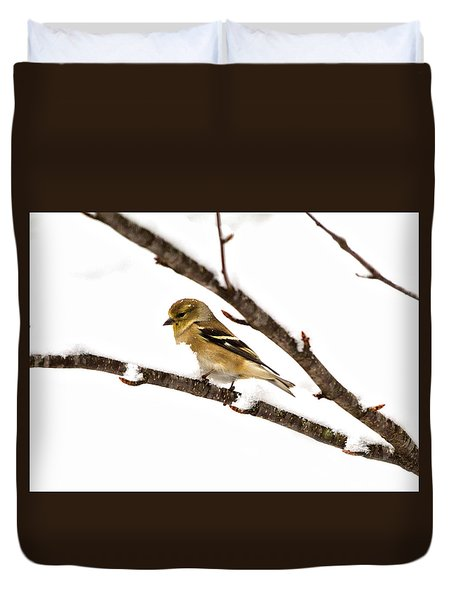 Snowy Day Goldfinch Duvet Cover by Betty Pauwels
