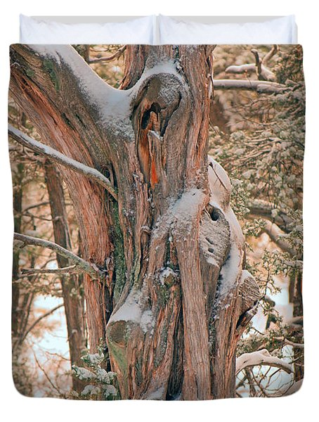 Snowy Dead Tree Duvet Cover by Donna Greene
