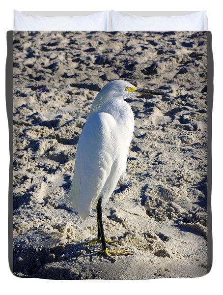 Snowy Egret At Naples, Fl Beach Duvet Cover