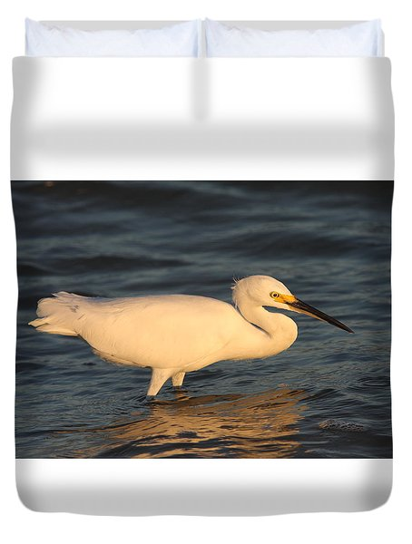 Snowy Egret By Sunset Duvet Cover by Christiane Schulze Art And Photography