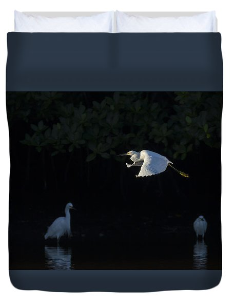 Snowy Egret Gliding In The Morning Light Duvet Cover