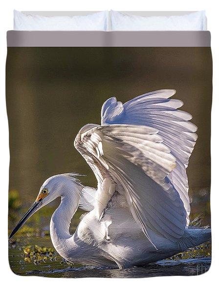 Snowy Egret Hunting - Egretta Thula Duvet Cover