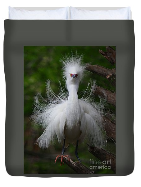 Snowy Egret In Breeding Colors Duvet Cover by Myrna Bradshaw