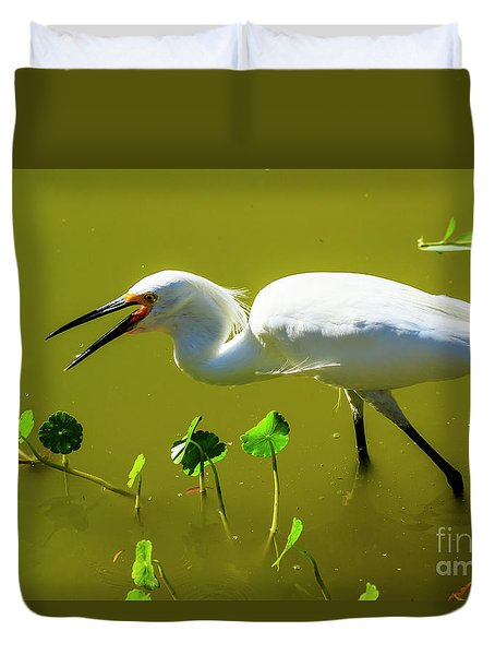 Snowy Egret In Florida Duvet Cover