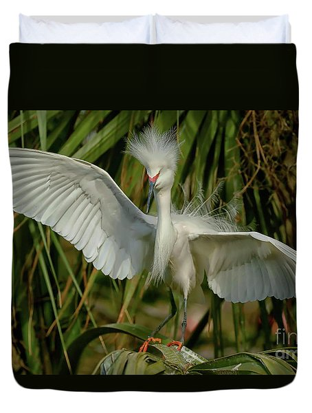 Snowy Egret In The Trees Duvet Cover by Myrna Bradshaw