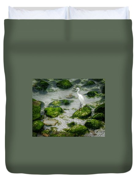 Snowy Egret On Mossy Rocks Duvet Cover