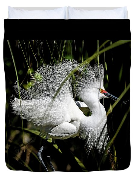 Duvet Cover featuring the photograph Snowy Egret by Steven Sparks