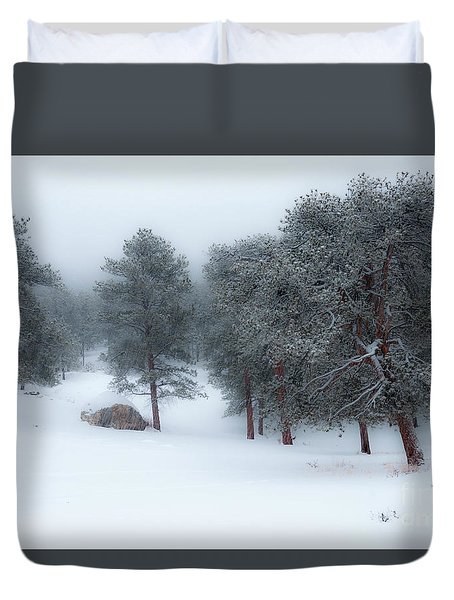 Snowy Morning - 0622 Duvet Cover