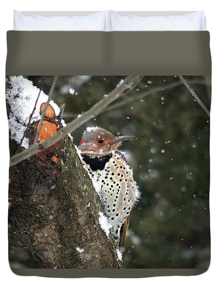 Snowy Northern Flicker Duvet Cover by Trina Ansel