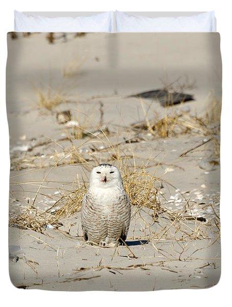 Snowy Owl Breezy Point Duvet Cover by Maureen E Ritter