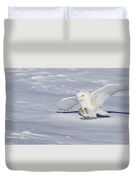 Duvet Cover featuring the photograph Snowy Owl by Dan Traun