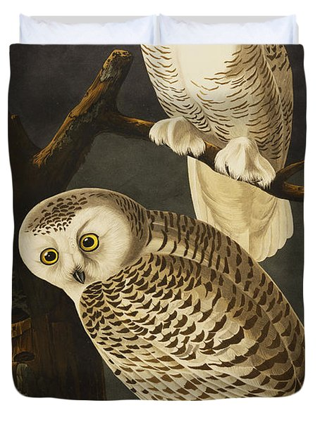 Snowy Owl Duvet Cover by John James Audubon