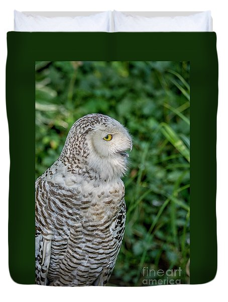 Duvet Cover featuring the photograph Snowy Owl by Patricia Hofmeester