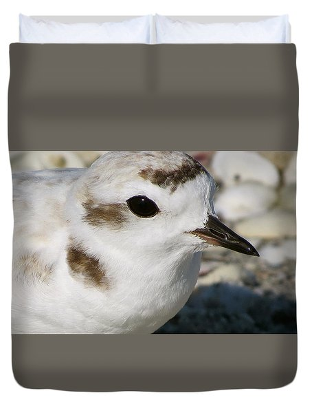 Duvet Cover featuring the photograph Snowy Plover Close Up by Melinda Saminski