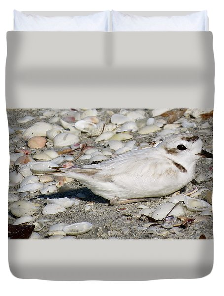 Duvet Cover featuring the photograph Snowy Plover by Melinda Saminski