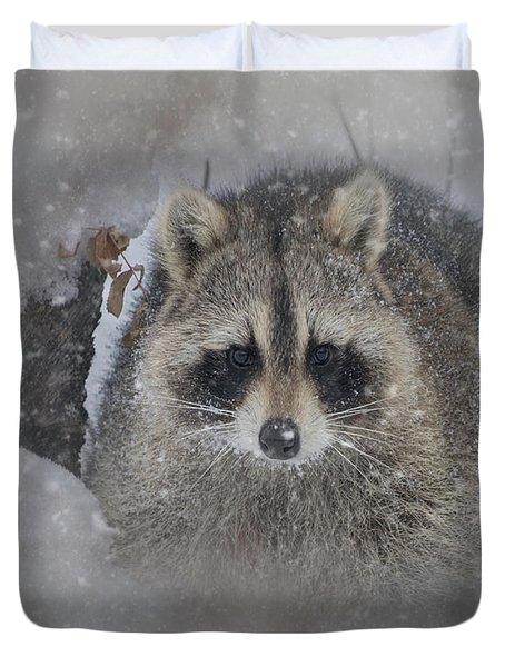 Snowy Raccoon Duvet Cover