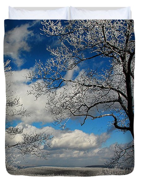Snowy Sunday Duvet Cover by Lois Bryan