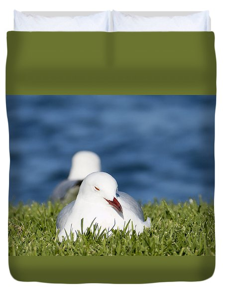 Duvet Cover featuring the photograph Soaking Up The Sun 01 by Kevin Chippindall