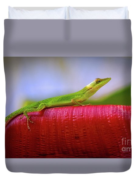 Soaking Up The Sun Duvet Cover by Doug Sturgess
