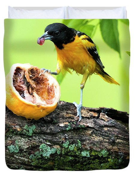 Soaking Wet Baltimore Oriole At The Feeder Duvet Cover