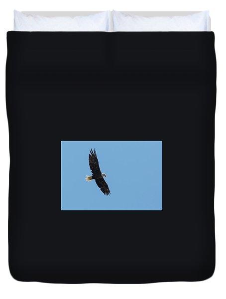 Soaring Bald Eagle Duvet Cover