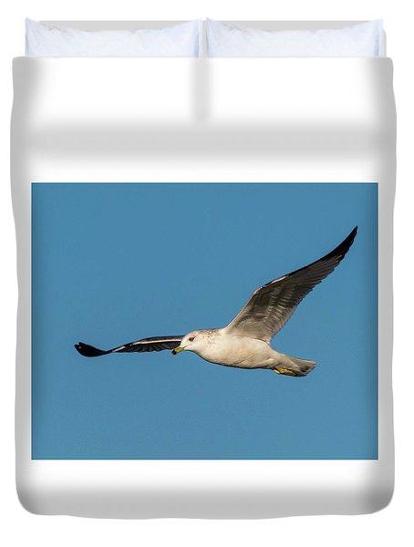 Soaring Gull Duvet Cover