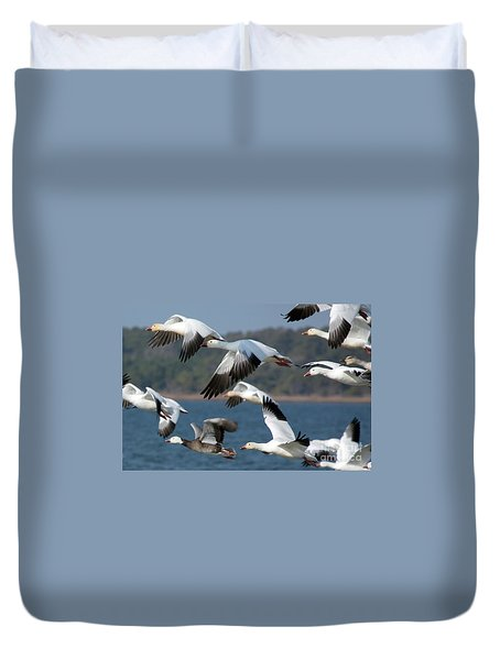 Soaring On The Wing Duvet Cover