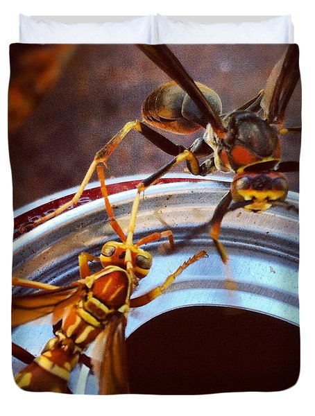 Soda Pop Bandits, Two Wasps On A Pop Can  Duvet Cover