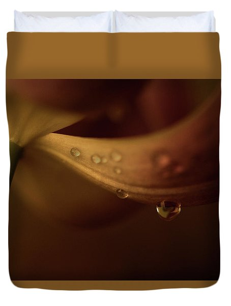 Soft And Smooth Duvet Cover