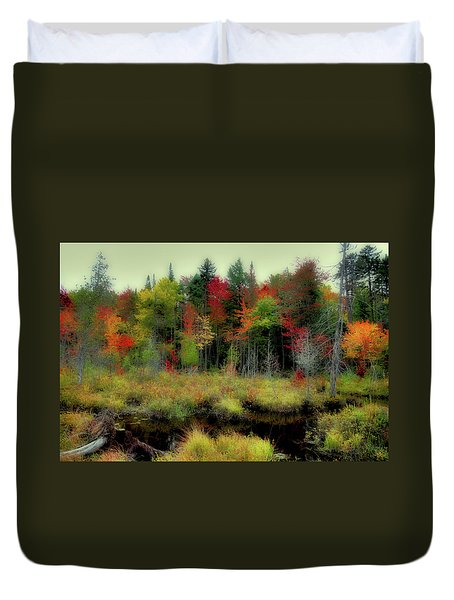 Duvet Cover featuring the photograph Soft Autumn Color by David Patterson