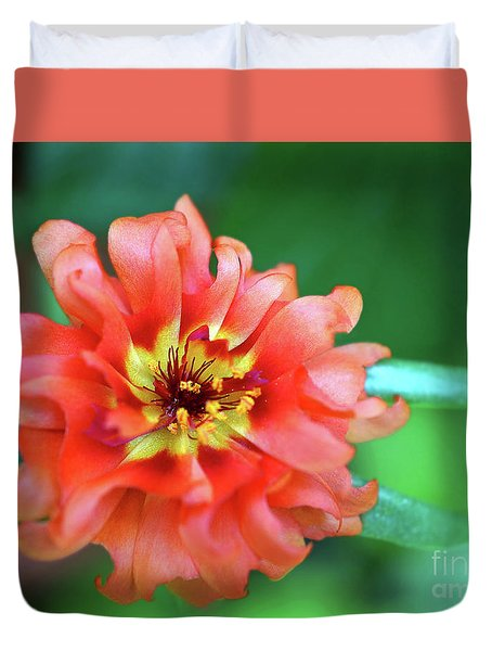 Soft Peach Ruffled Petals Duvet Cover by Sue Melvin