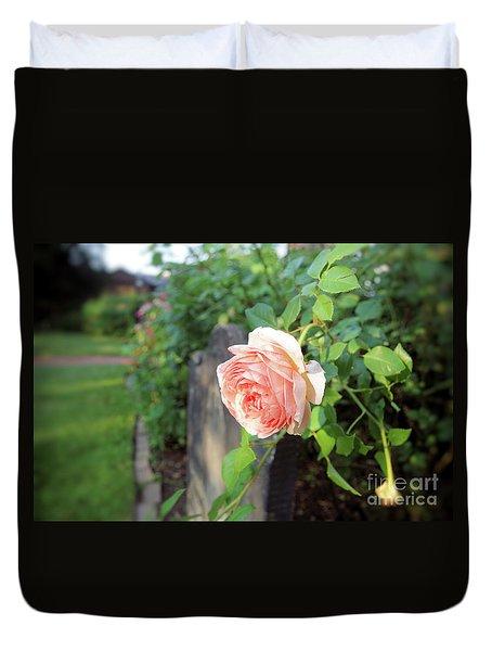 Soft Rose Duvet Cover