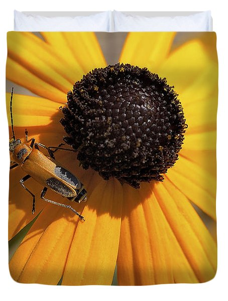 Soldier Beetle On His Flower Duvet Cover