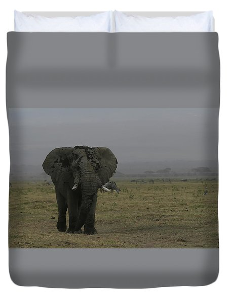 Duvet Cover featuring the photograph Solitary Bull Elephant by Gary Hall