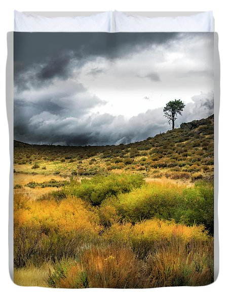 Duvet Cover featuring the photograph Solitary Pine by Frank Wilson