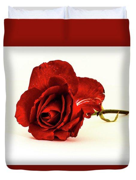 Red Rose Bud Duvet Cover
