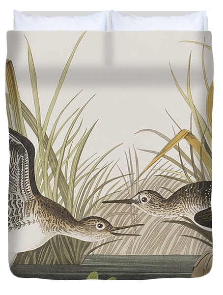Solitary Sandpiper Duvet Cover by John James Audubon
