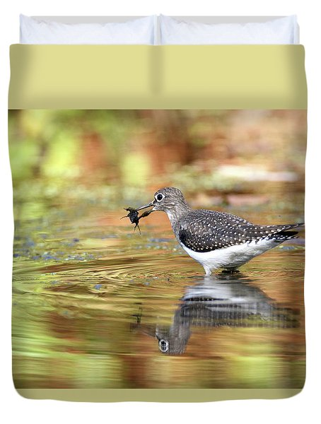 Solitary Sandpiper With Belostomatide Duvet Cover