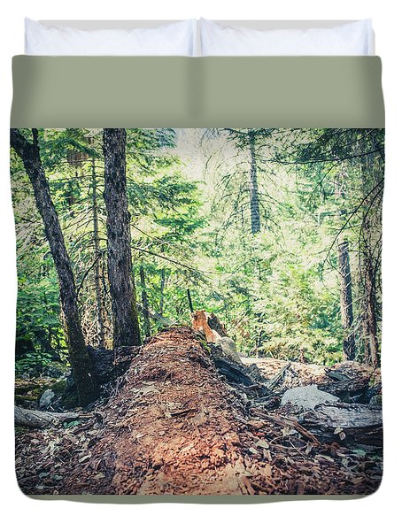 Somber Walk- Duvet Cover