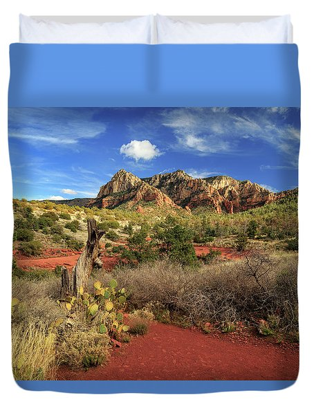 Some Cactus In Sedona Duvet Cover by James Eddy