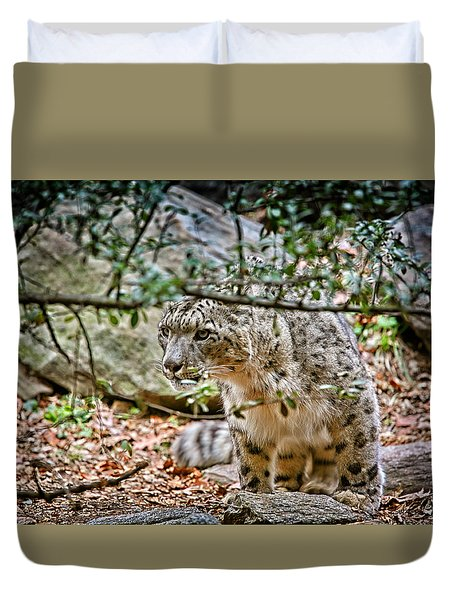 Something Got His Attention Duvet Cover by Karol Livote