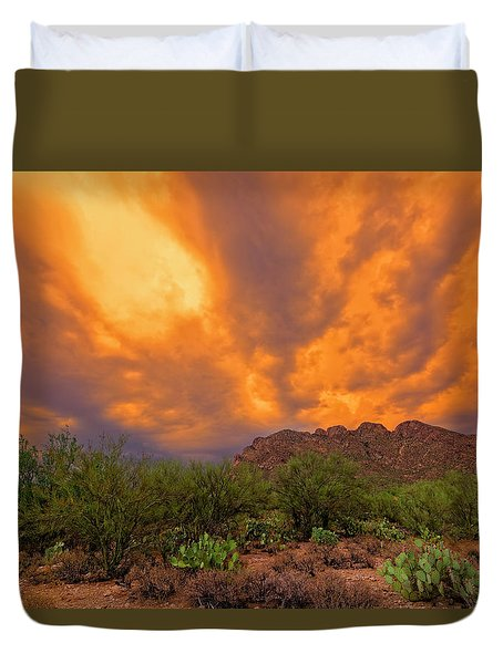 Duvet Cover featuring the photograph Sonoran Sonata H16 by Mark Myhaver