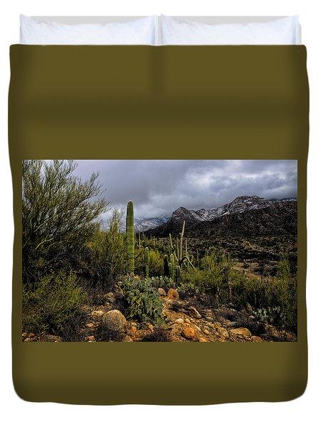 Sonoran Winter No.1 Duvet Cover